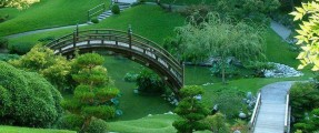 bridges_life_paths